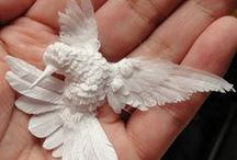 Bird In The Hand / by Cathy Childs Morrison