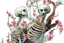 Skeleton Jewelry and Skulls / by Minerva Cook
