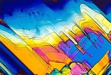 Microscopy / by joão figueiredo