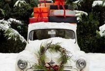 Christmas Joy / by Shelly Irizarry/Vigil