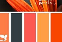 Color & Web Design / by Michelle Farrell