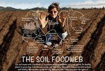 RVA Farmers / Farmers feeding Richmond, VA #RVA, #localfood