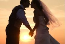 Bridal Shower/Wedding/Baby Shower / by Patricia B