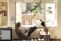 Creative Work Spaces / light filled, plant filled, feminine work spaces, lots of diy and minimal design, obvs