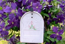 Mailboxes / by Colleen Jenkins