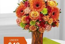 Fab Flowers Under $40 / Fresh flowers, plants and gifts from your local florist.