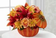 Halloween  / Flowers and decorating ideas for Halloween. Boo!