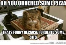 Random/Funny / by Brianna Steelman
