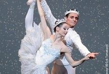 Nuts About the Nutcracker / Tis' the season for Nutcracker performances! / by Discount Dance Supply