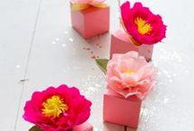 [CREA] Fleurs /// Flowers