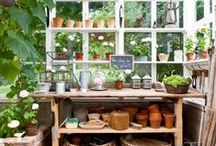 Greenhouses, sun houses, potting sheds...