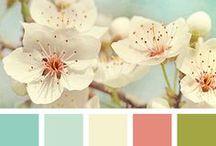 © couleurs /// colors