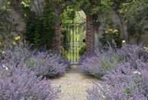 Garden gates, doors, and arbors