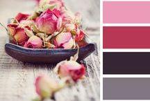 © rose /// pink