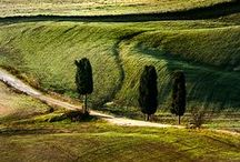 Roads of Tuscany / Roads, paths and trails for unexpected and romantic Tuscany.