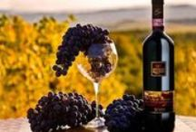 La Valiana - Wine Tour / Tuscany is world-renowned for the fine red wines. This Tuscan Wine fragrance is a true luxury fragrance, beginning with top notes of black grapes, strawberry, and red wine; followed by middle notes of white flowers and sweet cinnamon; and sits on dry wood notes.