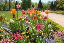 Spring in Bavaria / The prettiest photos of springtime in Bavaria, complete with gardens and flowers / by A Lady in London