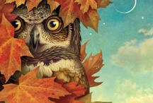 OWLS WHO GIVE A HOOT ! / by Laura Campanelli