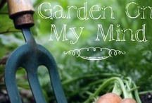 How does your GARDEN grow? / by Tonya Roberts