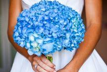 Krysten's Big Day / Wedding Party & Bachelorette