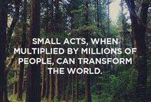 Conservation Inspiration