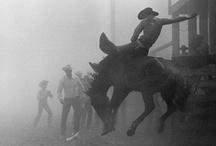Country Boys / by Rebbecca Richmond