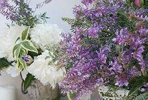 Florals / by Maureen