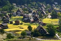 Japan Trip Plan / by Eunice Han