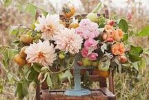 Flowers|Peach, Coral & Orange / by Parsonage Events