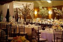 Flowers|Branches / by Parsonage Events