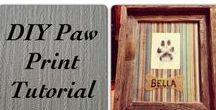 Doggie Dog World / Pup stuff