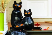 Holiday: Halloween & Thanksgiving / Halloween, Thanksgiving and the Fall season, including DIY crafts, home decor and yard displays, recipes to make, costumes, and more.
