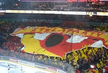 Jokerit Helsinki / My favourite hockey team, that also helped me to write my book The Winning Helix