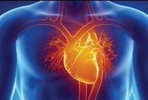 Health: Heart / Research and tips on natural, alternative and conventional methods of treating and reversing heart disease, and using good nutrition, exercise and supplements to keep the heart healthy and to lower blood pressure and bad cholesterol.