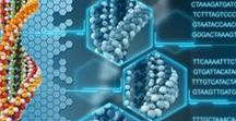 Science: Genes & DNA / Interesting articles and videos about genes, evolution, DNA testing, genetics, and heredity.