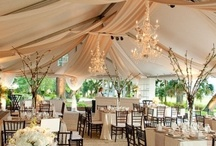 Wedding Notebook / Curated by Canopy Rose Catering, a Tallahassee, Florida catering and special event company. / by Chef Kathi