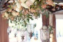 Spring Weddings | Paloma Blanca / A collection of our favorite spring wedding trends. / by Paloma Blanca