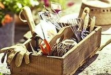Garden & Kitchen Tools / Useful in the garden and out.