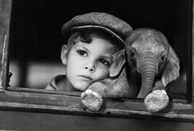 Kids and Elephants