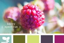 I <3 Colour Palettes / by Jessica Nevala