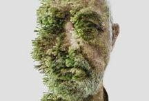 Art - Green art - Land art