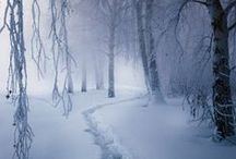 WINTER / by Lola Stude