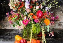 Flowers / by Liz Henry