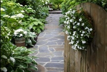 Garden & More / by Jil Manuel