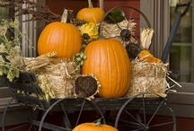 Fall into Autumn / by Lorri Beth