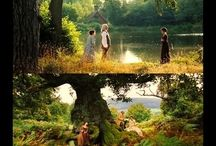 Austen / by Felicia Davis