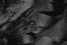 * Black *