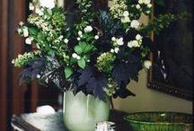 Flowers (arrangements, bouquets)