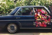 \Flowers/ / by Felicia Davis