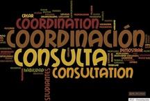 PLE 6 - CONSULTATION & COORDINATION (Consulta y coordinación)